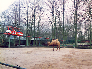 Akapp Multiconductor 700m long track for people mover in a zoo